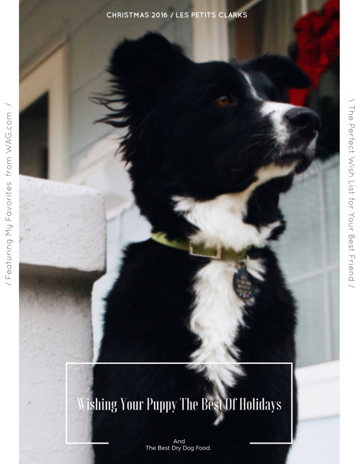 The Best Of Holidays & Best Dry Dog Food. + Giveaway.